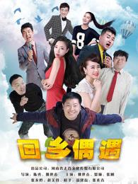 回乡偶遇(喜剧片)