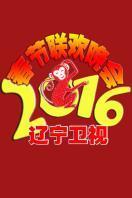 辽宁卫视春节联欢晚会 2016