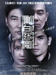 黑白迷宫 粤语 (动作片)