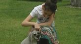 懂事宠物狗曾在主人失恋时安慰她