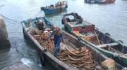 东海无鱼下的渔民:休渔难敌产能 提议禁渔两年