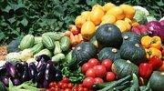 中国生态农业大会 探讨农业的政策与前景