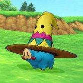 墨西哥帽.jpg