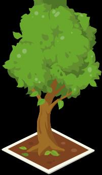 协会绿化树.png
