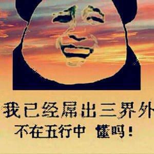 熊猫表情包6.jpg