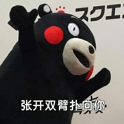 熊本熊污王表情包6.jpg