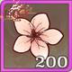 桃花x200.png