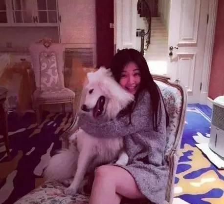 乔欣是真实版曲筱绡:外表文静家境富裕 - 一统江山 - 一统江山的博客