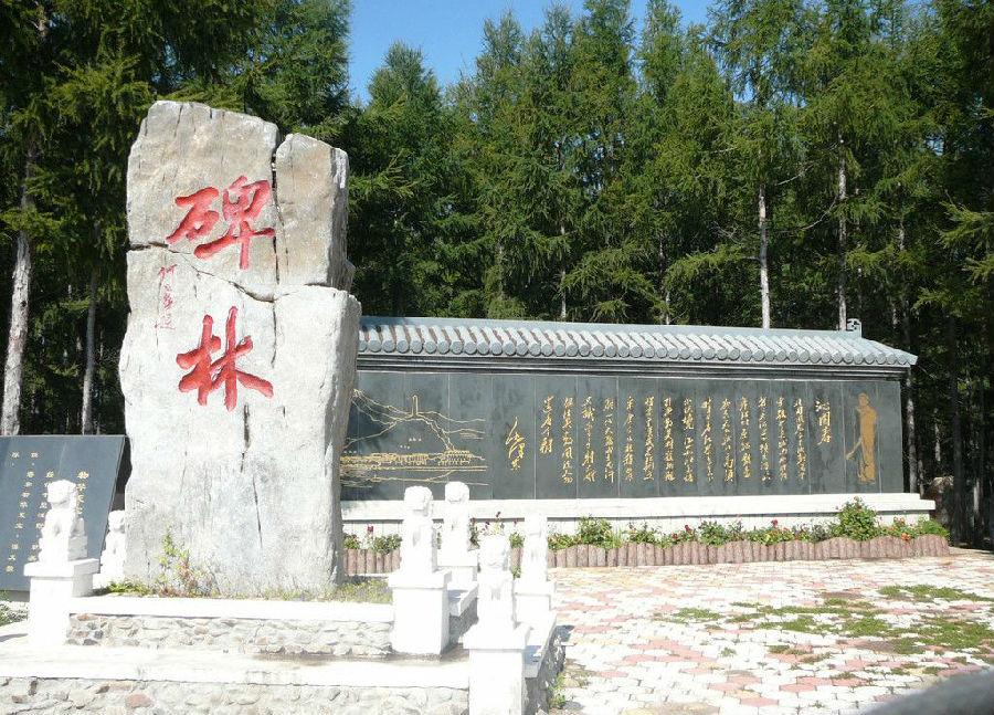 碑林区域南为西安著名的文化区,有西安交通大学,西北大学,西北工业