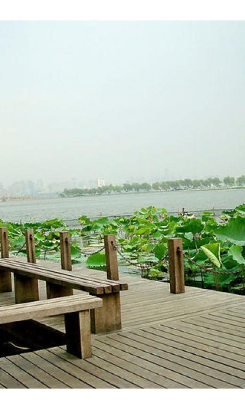 绿色西湖风景壁纸