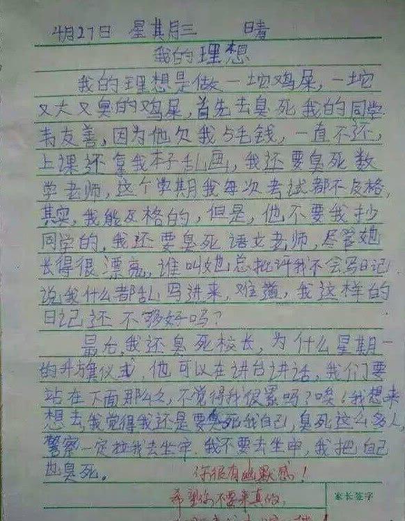 学生写作文的意义_怎样教学生写作文