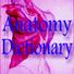 解剖学字典