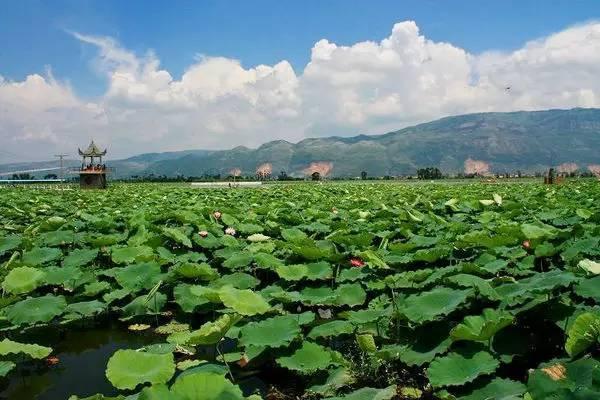 山东省人口最多的县_山东省人口最多的县,战神吴起诞生于此