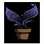 盆栽的蕨类植物.png