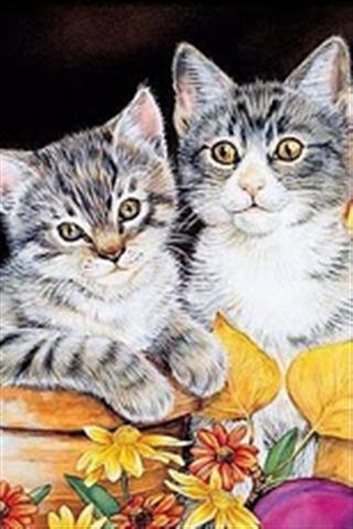 可爱的猫壁纸_360手机助手