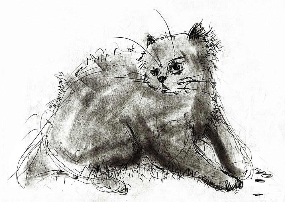素描通常意味着可于平面留下痕迹的方法,如蜡笔,炭笔,钢笔,画笔 ,墨水