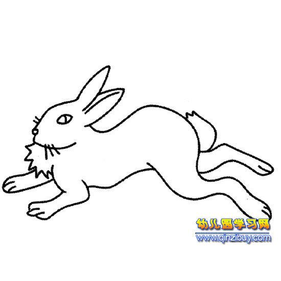 小白兔比赛跑步怎么画