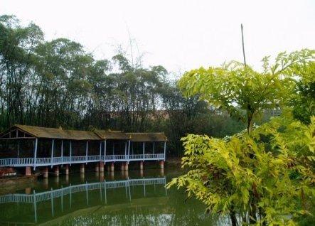 有五象岭森林公园,大王滩,凤亭湖,屯六水库,绿都温泉,竹泉岛等旅游