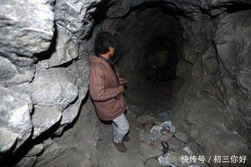 山洞里的蛇图片