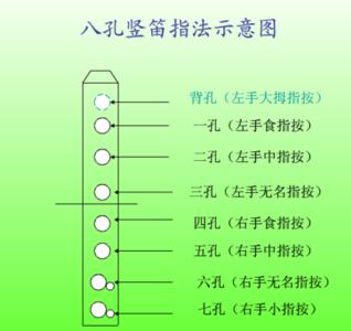 八孔竖笛谱虫儿飞_曲谱分享