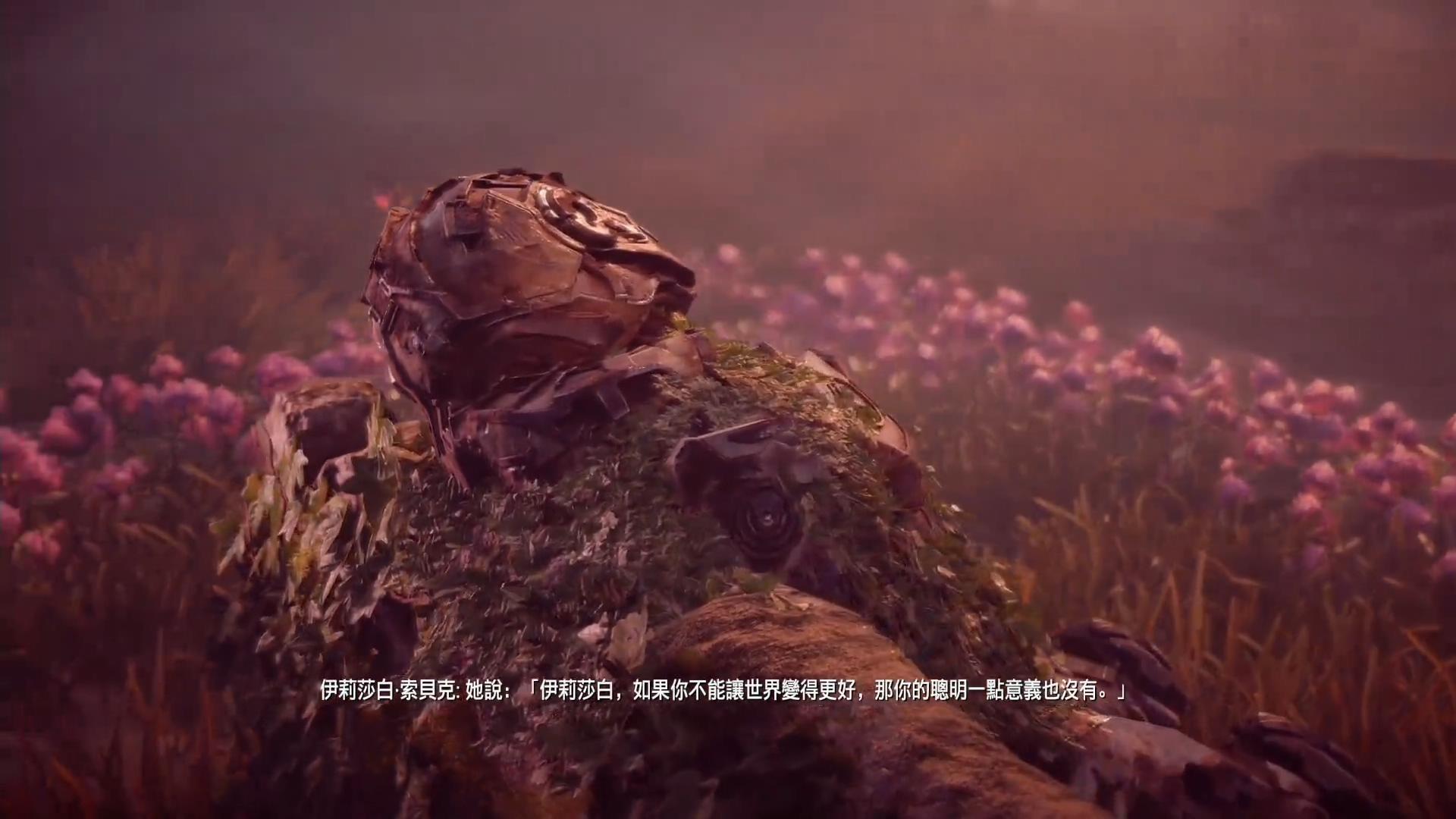 《地平线:零之曙光》评测 (36).jpg