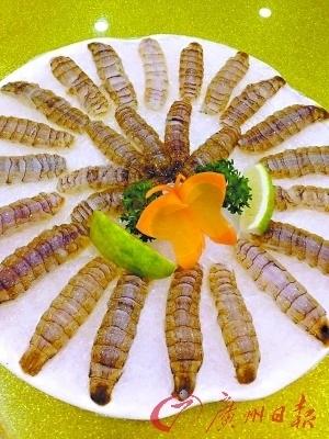 濑尿虾刺身鲜甜似海胆