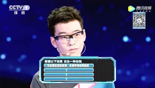 1V1比拼太反转!陈鲲羽不敌对手,守擂失败?