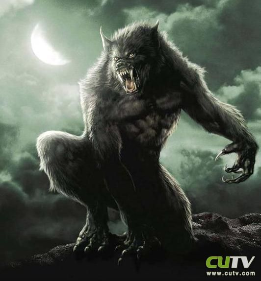 狼人-游戏《魔兽世界》中角色