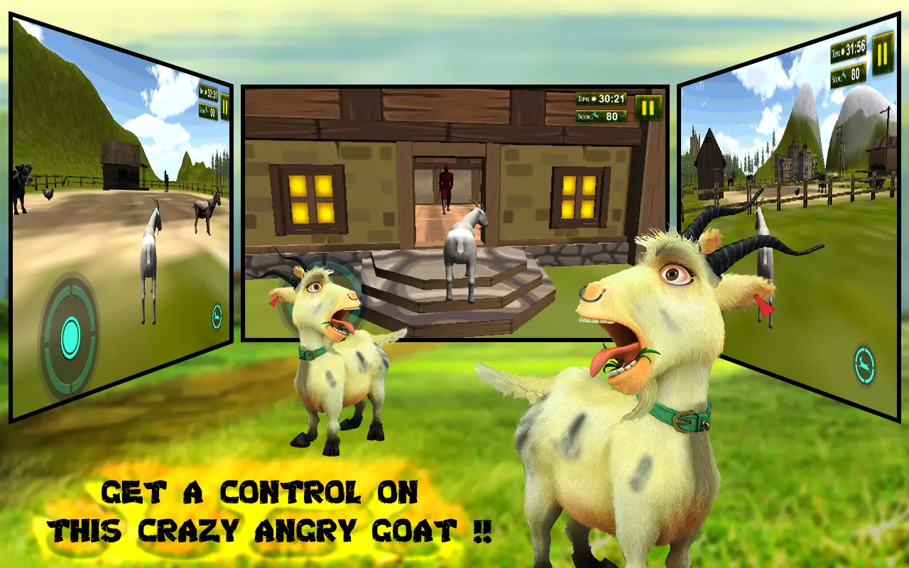 马等动物都在山羊疯狂的事情