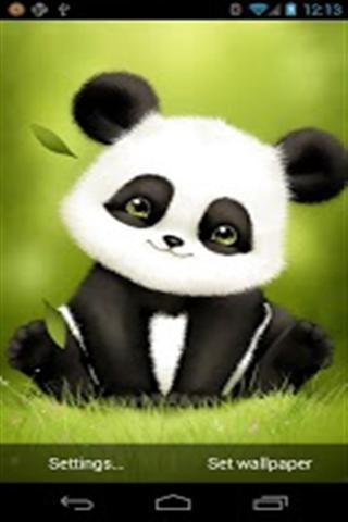 可爱熊猫主题壁纸_360手机助手