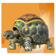精金龟-图鉴.png