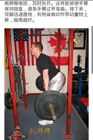 背部肌肉锻炼