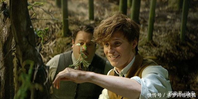 《哈利·波特》与《神奇动物在哪里》有什么关系
