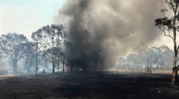 澳大利亚山火得到控制 土地一片焦黑