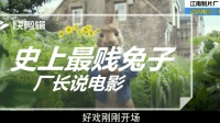 脑残电影《比得兔》: 一部颠覆五十年中国教育的科教片