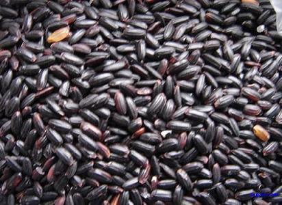 10大坚果食用禁忌:为了您的健康请看完 - 一统江山 - 一统江山的博客