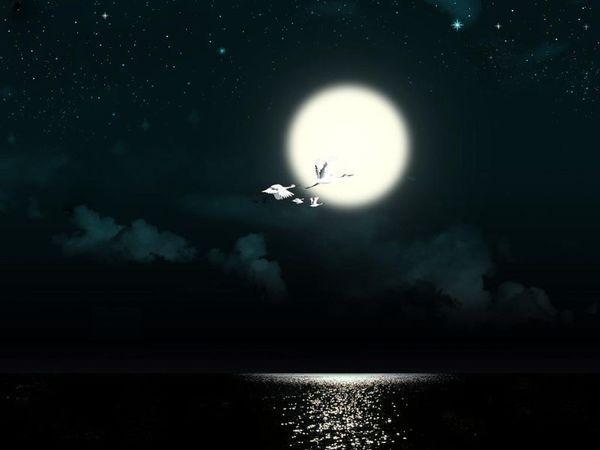 求唯美古风的月亮的图片,一定要有意境,速度呀谢啦-唯美古风女子