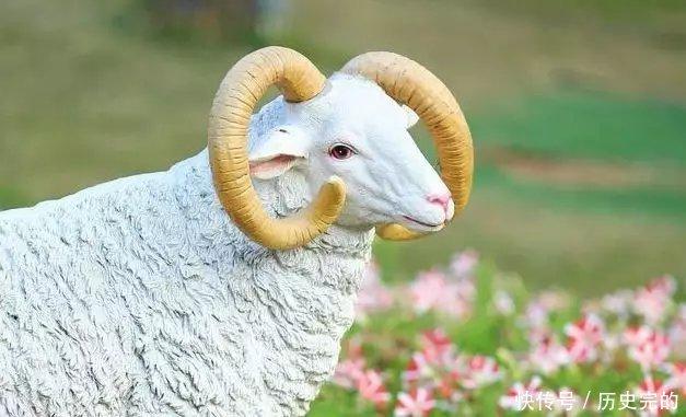 <b>生肖羊跟这个属相在一起,天生一对,是上等好命</b>