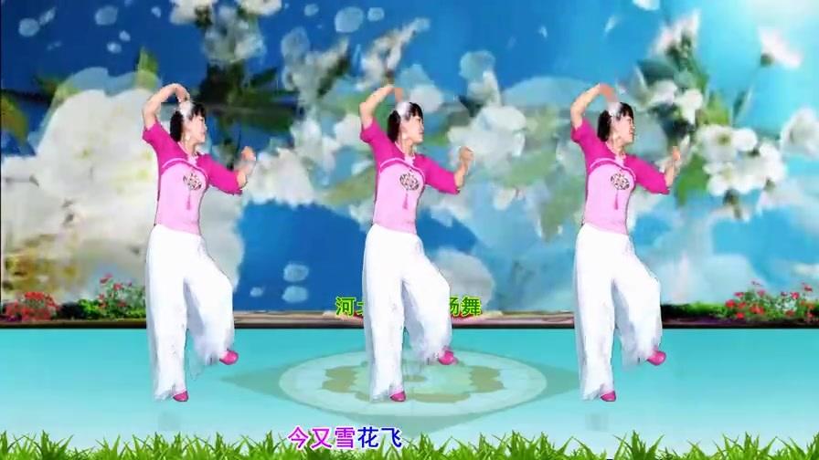 心醉DJ广场舞《梅花泪》动感32步,轻盈优美