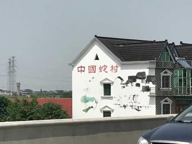 中国第一蛇村,村子里的人靠养蛇为生,一天最多被咬上百口!