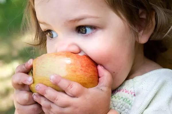 10种水果是果中黄金 你最不该错过! - 梦回故乡 - 梦回故乡