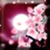 GO桌面主题浪漫樱花