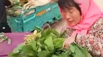 农民夫妻拉1300斤菠菜去卖以15元成交,小贩:菜质量的确一般