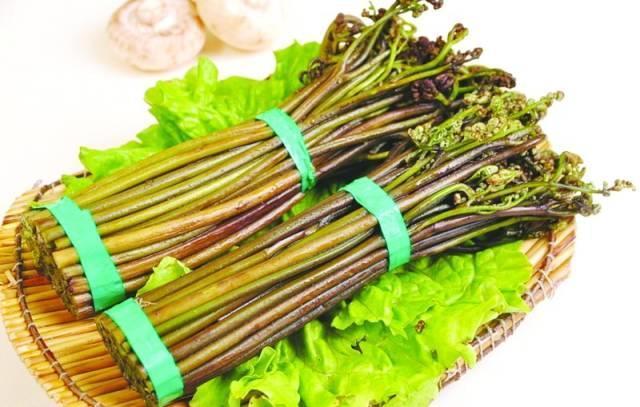 【转发】这种菜竟致癌!它曾被誉长寿菜 春天家家常吃 - 苗子 - 苗子的博客