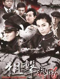 狙击部队DVD版
