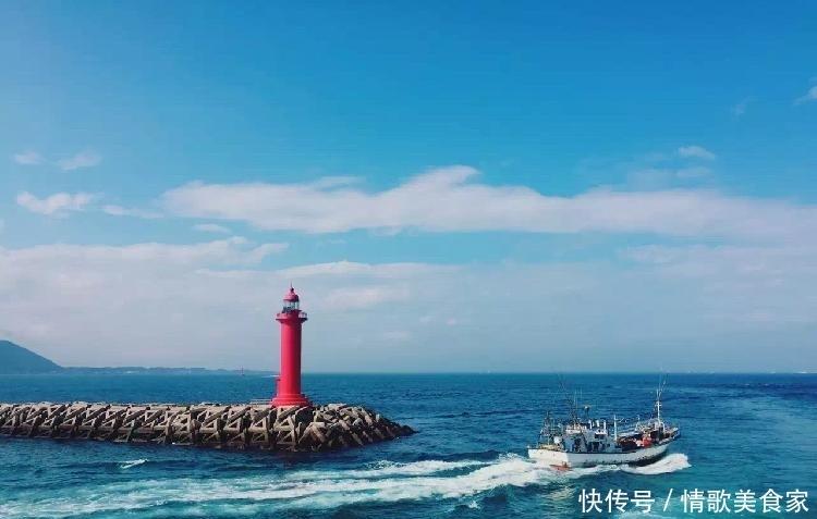 3.5小时直飞济州岛,过个有大海、绣球花、海鲜面的限量版夏天