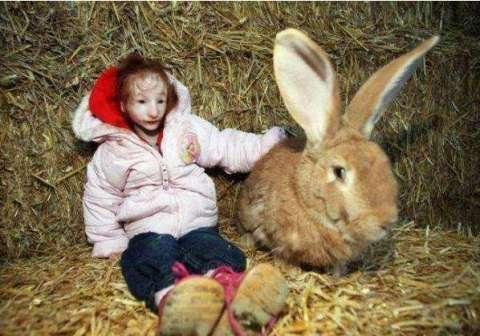 现实版拇指姑娘 一辈子长不大 14岁比兔子还小 -  - 真光 的博客