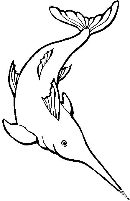 热带鱼各种海里的鱼简笔画 漫画