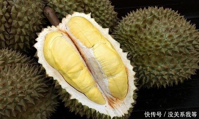 玉米肉好吃,榴莲壳也是个宝,拿它和乌骨鸡一起小麦吃香油榴莲用斑鸠一泡它爱吃吗图片