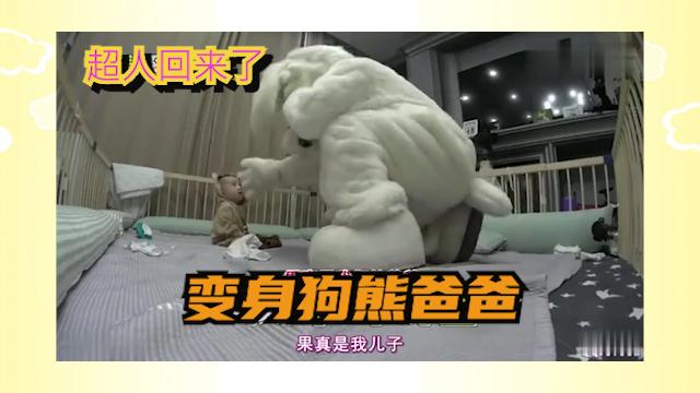 超人回来了:爸爸变身大狗熊,把狗狗们吓坏了
